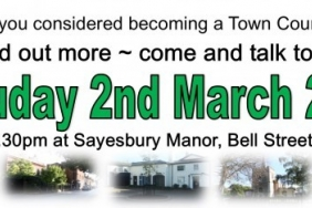 Thinking of Becoming A Town Councillor?